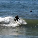 surf@henrys_28 [1600x1200]